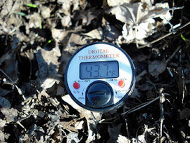 Cliff Mass Weather Blog: Soil Temperatures and Gardening | Rose gardening for everyone | Scoop.it