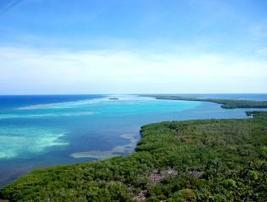 Supporting a Turneffe Atoll Marine Reserve in Belize | Belize in Social Media | Scoop.it