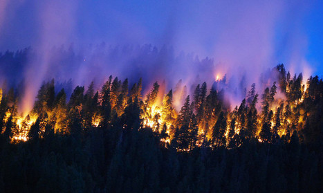 Futurity: Wildfires in California spew greenhouse gas   USF in the News   Scoop.it