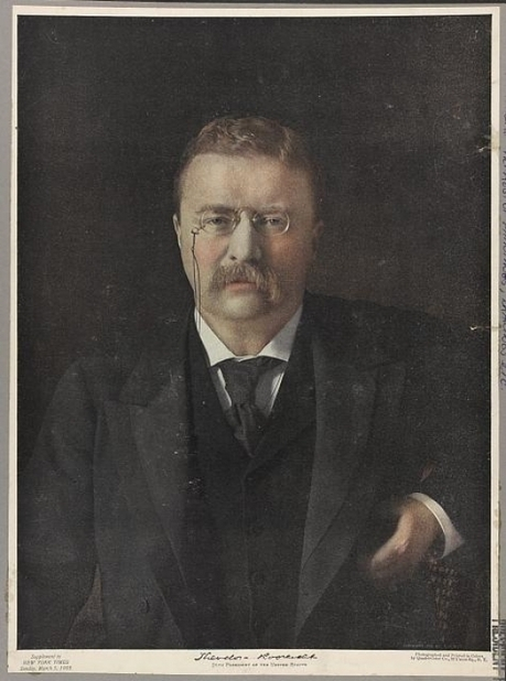 Theodore Roosevelt on net neutrality   Coffee Party News   Scoop.it