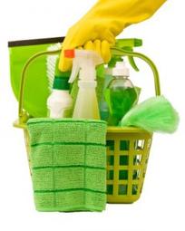 Cómo limpiar la casa sin usar quimicos   Noticias de ecologia y medio ambiente   EcoPaideia   Scoop.it