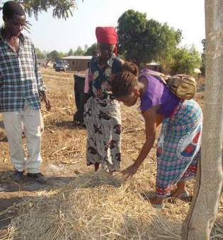 Solutions for smallholder farming in Malawi | Water Management | Scoop.it