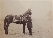 Did you know Ulysses S. Grant was a horse whisperer? | American History Fun Facts | Scoop.it