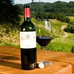 Investir dans le vin a-t-il un intérêt ? - Réponse a Tout | Oenotourisme en Entre-deux-Mers | Scoop.it