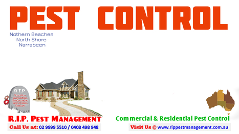 Tips for Commercial Pest Control | R.I.P. Pest Management | Pest Exterminator Northern Beaches | Scoop.it