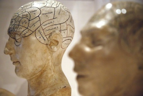 A New Theory Explains How Consciousness Evolved | The virtual life | Scoop.it