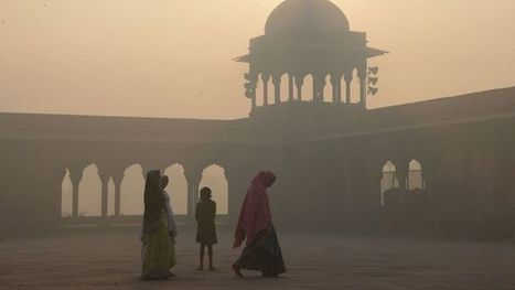 Delhi state smog draws 'gas chamber' comparison | Indian Travellers | Scoop.it