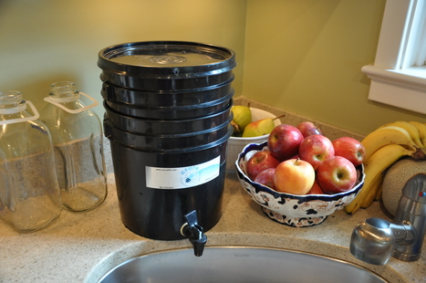 Go Greener by Composting Your Kitchen Waste | Childs Play - Permaculture for Kids | Scoop.it