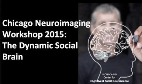 Chicago NeuroImaging Workshop on the Dynamic Social Brain | High-Performance Electrical NeuroImaging Laboratory | The University of Chicago | Social Neuroscience Advances | Scoop.it