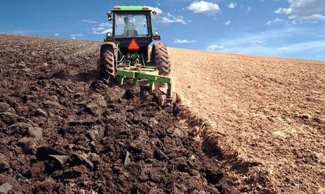 We're treating soil like dirt. It's a fatal mistake, because all human life depends on it   George Monbiot   Erba Volant - Applied Plant Science   Scoop.it