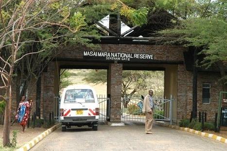 Experiencing Migration in Kenya Masai Mara   Safaris in India & Africa   Scoop.it