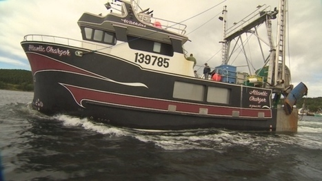 Atlantic Charger, stranded fishing boat, update to come - CBC.ca | Nova Scotia Fishing | Scoop.it