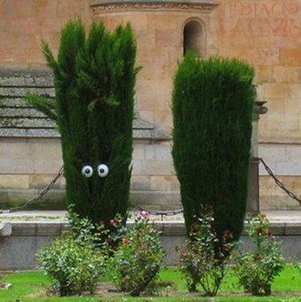 Street Art Installations - Human Plants. | Street Art and Artists | Scoop.it