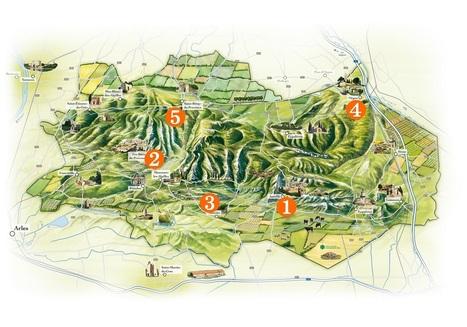 L'application Life dans les Alpilles... à la découverte des oiseaux   Saint Rémy de Provence Tourisme   Scoop.it