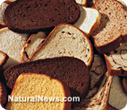 Your biological terrain is deranged by grains | Healthy Living Lifestyle | Scoop.it