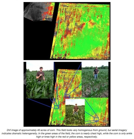 Agriculture Drone Buyer's Guide - Best Drone for the Job | Drone in Agriculture | Scoop.it