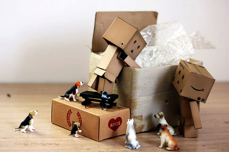 packers and movers , packers and movers Hyderabad | ashokapackers | Scoop.it