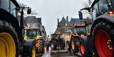 Les éleveurs de porcs bretons contre le dumping fiscal allemand - Le Monde   Le Fil @gricole   Scoop.it