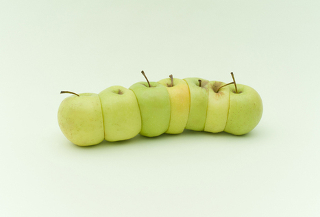 Organized Fruits and Vegetables Photographed by Florent Tanet | Video Scribing | Scoop.it