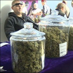 Cannabis Farmers Markets Are A Great Idea | TheVegas420 | Scoop.it
