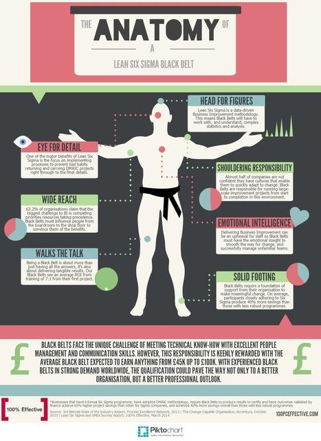 Anatomy of a [bad?] Six Sigma Black Belt | Geeks Wanted! | Scoop.it