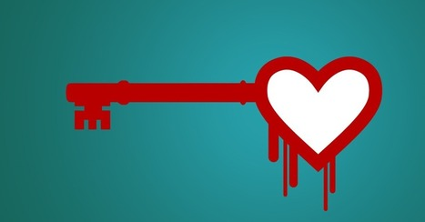 The Heartbleed Effect: Password Services Are Having a Moment | The enlightened manager | Scoop.it