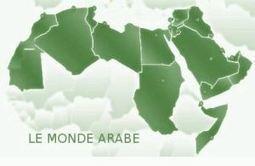 Le coup d'Etat de Wikileaks en Tunisie » Savoir ou se faire avoir   wikileaks news   Scoop.it