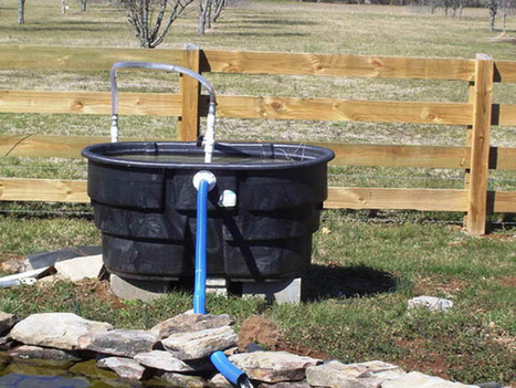 Will a homemade pond filter work?   Pond Talk   Scoop.it
