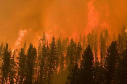 Coexist or perish, new wildfire analysis says | Sustain Our Earth | Scoop.it