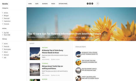 Revelio Blogger Template | Pro Templates Lab | Scoop.it