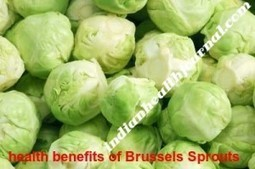 10 Top and Best Health Benefits of Brussels sprouts |Nutrition facts | indianjouranalhealth.com | Scoop.it