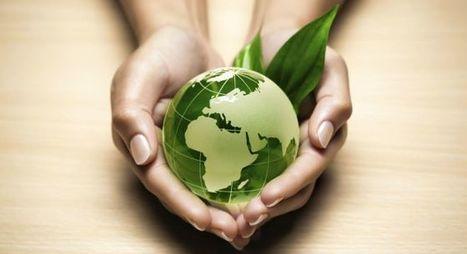 Do travelers prefer eco-friendly hotels? | Médias sociaux et tourisme | Scoop.it