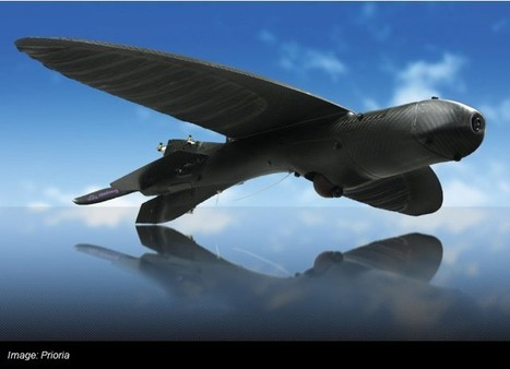 Army Scores a Super-Stealthy Drone That Looks Like a Bird | 21st Century Innovative Technologies and Developments as also discoveries, curiosity ( insolite)... | Scoop.it
