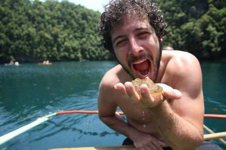 Mangiare meduse per salvare la biodiversità mediterranea   Ambiente - Environmental   Scoop.it