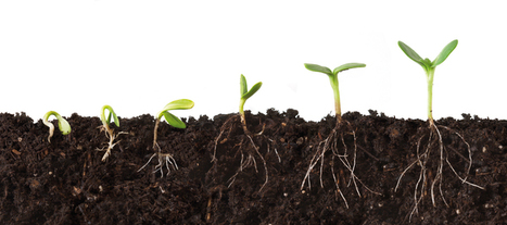 Nature: Microbiome: Soil science comes to life (2013) | Organic  vs GMO | Scoop.it