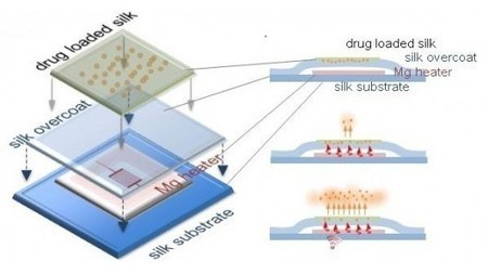 Electronic implants treat staph infections, and then dissolve | Longevity science | Scoop.it