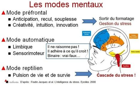Le stress : le comprendre et le gérer. | Neurosciences et psycho | Scoop.it