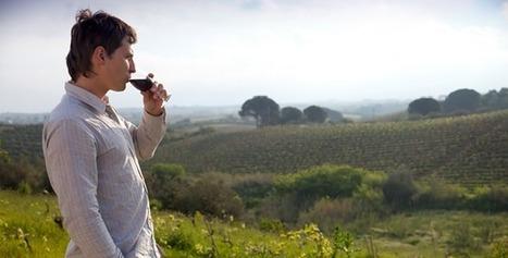 Quelques chiffres surprenants sur la consommation de vin en France | Univers du vin | Scoop.it