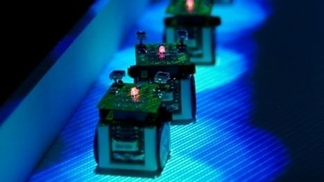 Des chercheurs toulousains utilisent des micro-robots qui imitent les fourmis pour comprendre leur comportement - France 3 Midi-Pyrénées | Actualité des laboratoires du CNRS en Midi-Pyrénées | Scoop.it