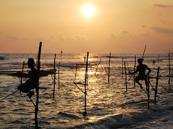 Volunteer in Sri Lanka   Volunteer Abroad   Scoop.it