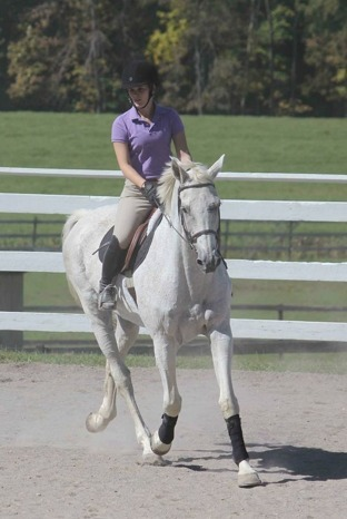 Every December 13 is National Day of the Horse!   Central New York Traveler   Scoop.it