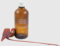 Ceylon Cinnamon Leaf Oil shipped worldwide from Ceylon-Cinnamon.com | Healthy And Fit | Scoop.it