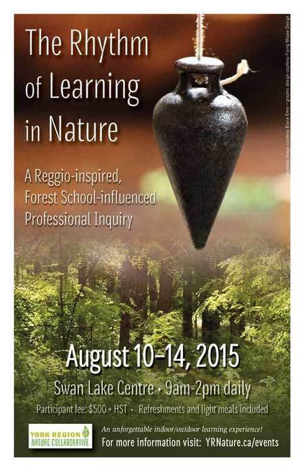 Breaking New Ground in Reggio Inspired Practice: The Atelier of Nature | Professional learning for early childhood educators | Scoop.it