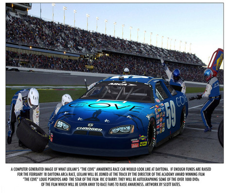 Blog: The Cove at Daytona Redux!   SaveJapanDolphins.org   Dolphins   Scoop.it
