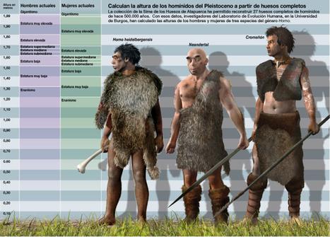 Los humanos de la Sima de los Huesos (Atapuerca) crecían de una forma diferente | Enseñar Geografía e Historia en Secundaria | Scoop.it