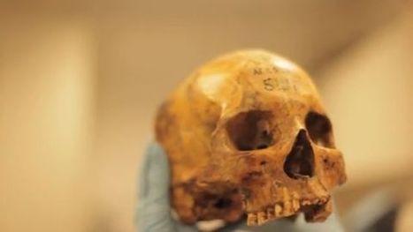 AFRIQUE : Ancient bone fragments help describe diet, health of Saharan ancestors | World Neolithic | Scoop.it