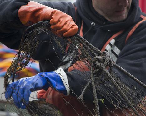 Ghost nets haunt local waters no more   Fish Habitat   Scoop.it