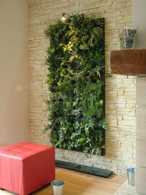 Add Greenery to Your Interior Space Using Vertical Gardens | What Surrounds You | Scoop.it