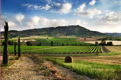 Scopri il territorio e i sapori della Val D'Orcia   La Locanda del Vino Nobile Montepulciano   B&B a Montepulciano » La Locanda del Vino Nobile   Scoop.it