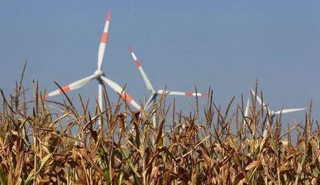 Le développement durable, facteur de compétitivité | le développement durable | Scoop.it